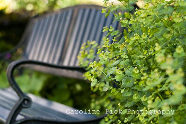 Organisch tuinontwerp van buitenbuiten hoveniers for Tuinontwerp boek