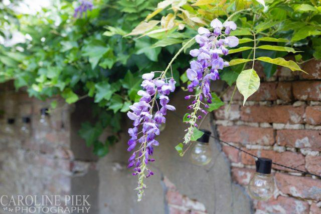 Tuinreportage Maarssen - Tuinfotografie voor Groenregie
