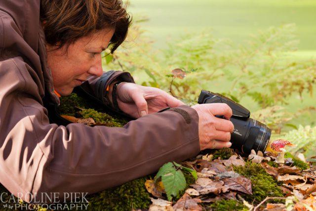 fotografieworkshop paddenstoelen fotograferen