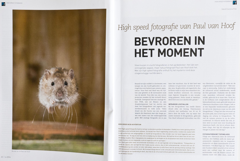 Interview met Paul van Hoof