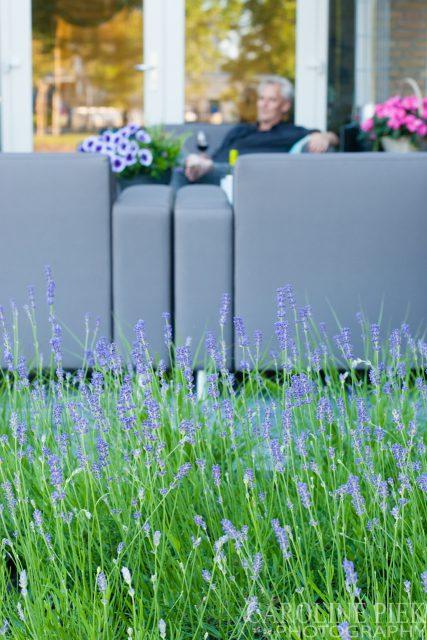 Tuinfotografie voor tuinontwerper of hovenier