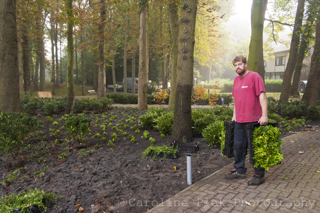 kloostertuin piekzweverink hoveniers tuinontwerp tuinontwerper fotoreportage tuinreportage