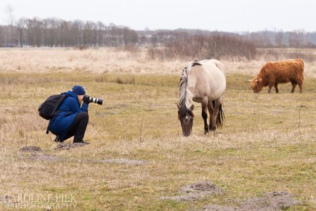 fotografieworkshop lentevreugd