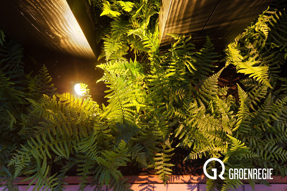 Tuinreportage in oudewater voor groenregie