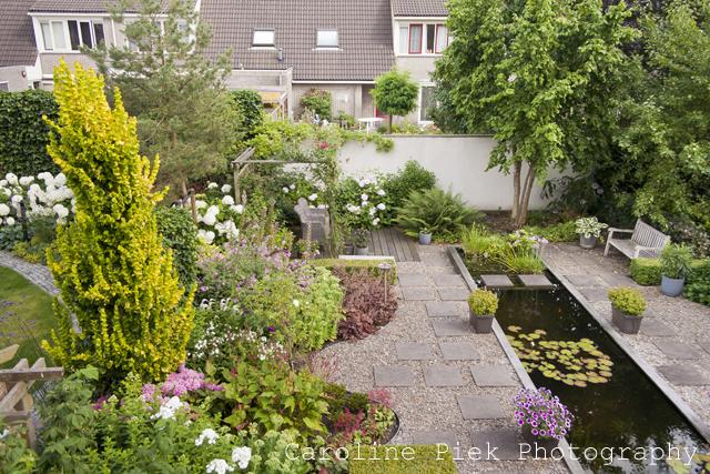 Tuinreportage voor BuitenBuiten Hoveniers
