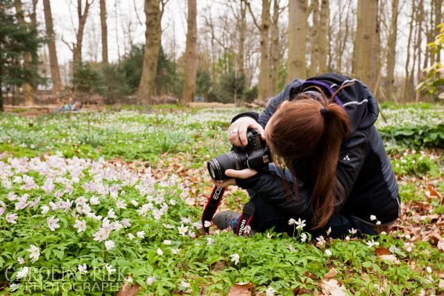 fotoworkshop bosanemonen